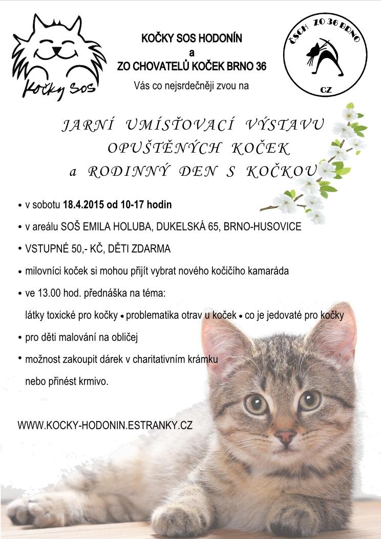 Jarní umisťovací výstava opuštěných koček a rodinný den s kočkou  - 18. dubna 2015